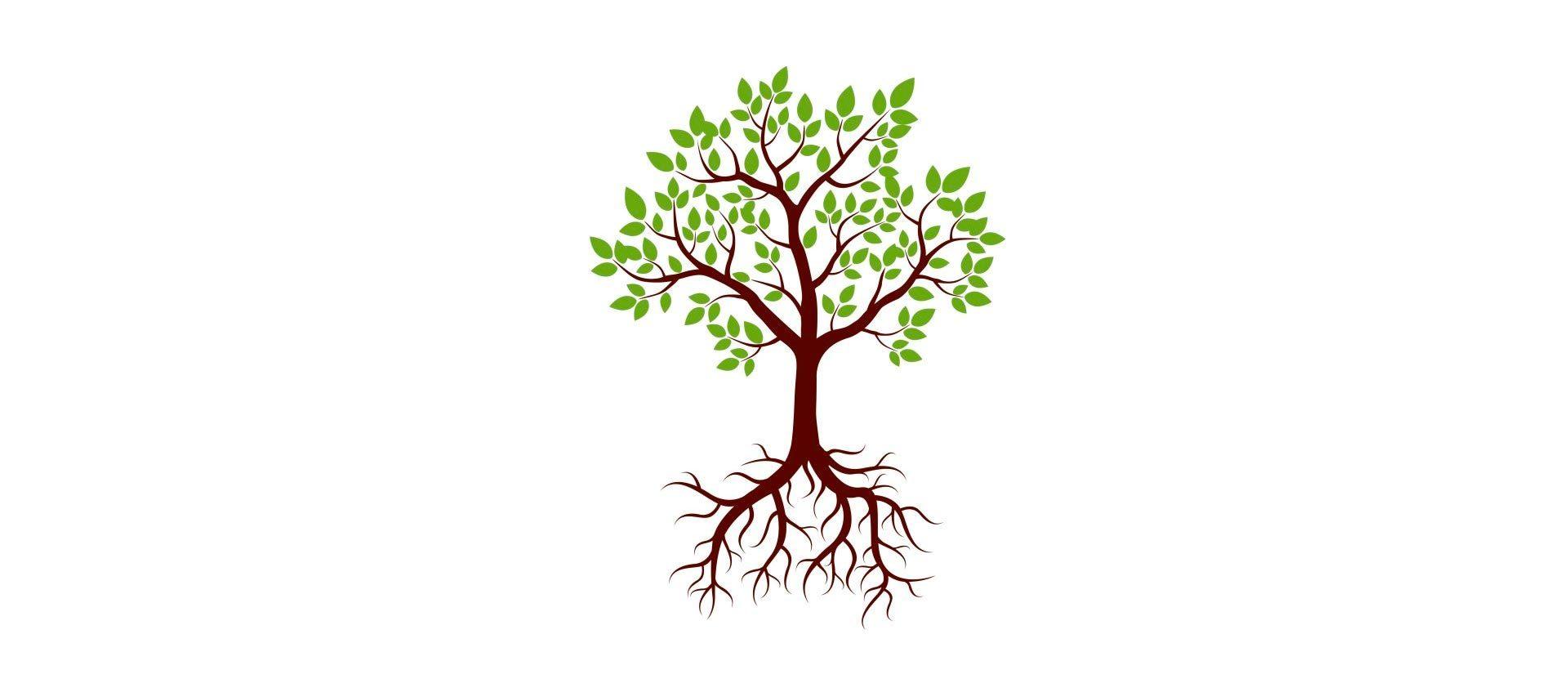 Test del árbol: utilidad y significación psicológica - ISFAP